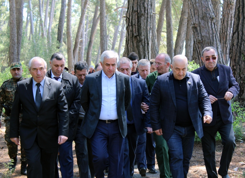 The President Held a Meeting on Issues of Illegal Construction on the Territory of the Pitsunda-Myussera Nature Reserve